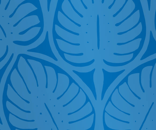 air tahiti nui blue pattern