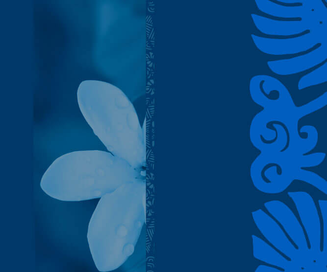 homepage Air Tahiti Nui New Logo