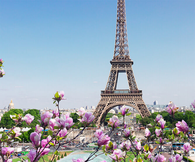 Spring in Paris with the Eiffel Tower