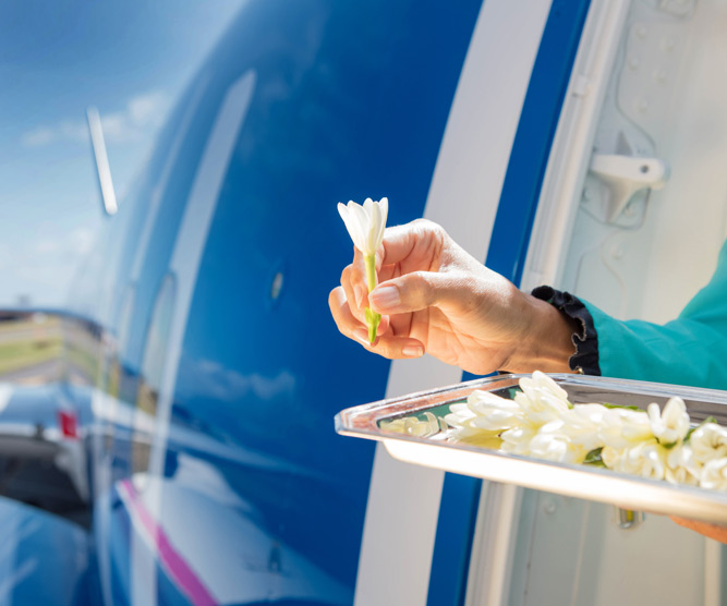 air tahiti nui welcome onboard with tiare flower
