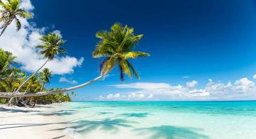 Fakarava | Untouched Polynesia holiday, by Travel Nation