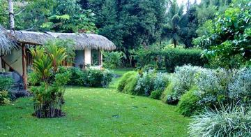 Garden view at Pension Vanira Lodge