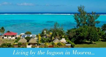 Living by the lagoon in Moorea