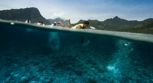 Photo of a man swimming in the lagoon of Moorea