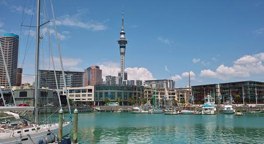 Photo of the marina and skytower at Auckland