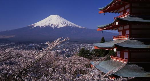 view of the mont fuji in Japan